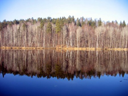 """Национальный парк """"Марий Чодра"""""""
