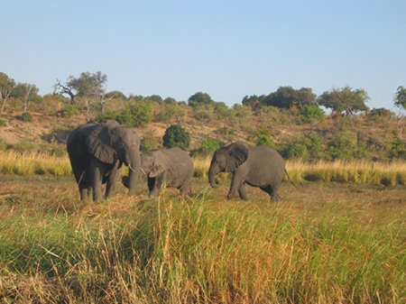 Национальный парк Камея
