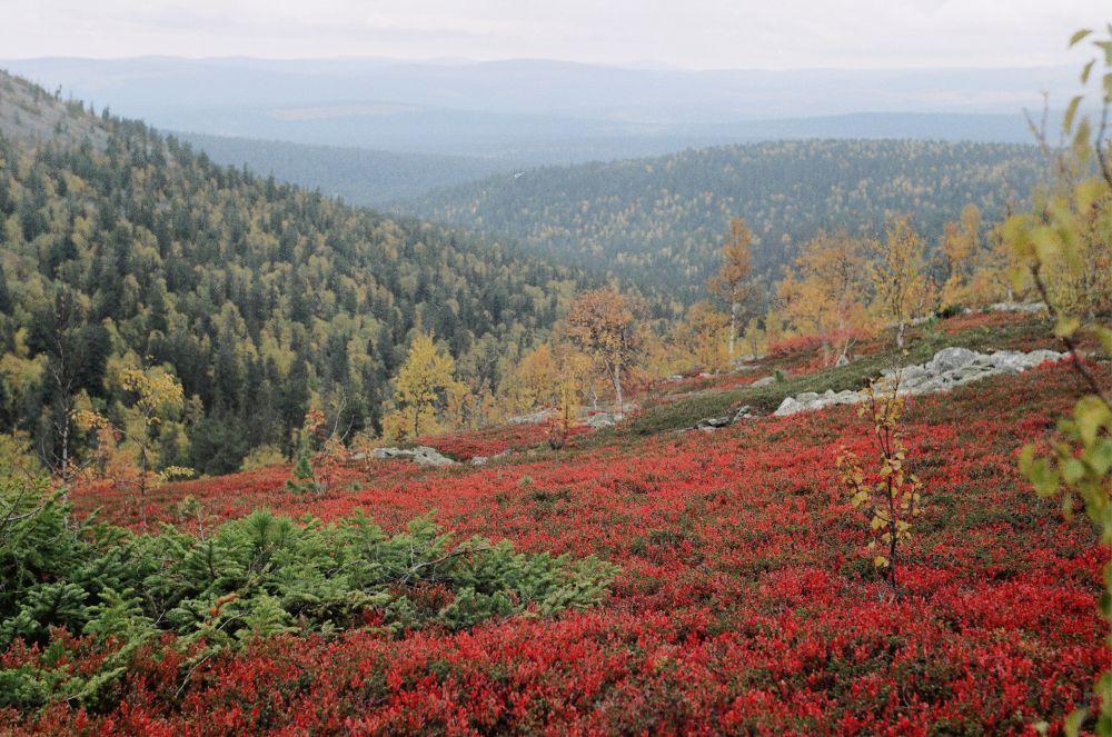 фото заповедников краснодарского края